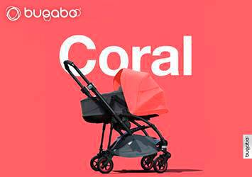Bee 5 Coral