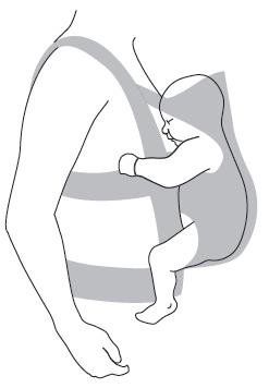 mochila babybjorn one